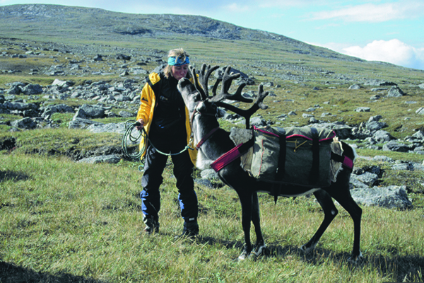 Lena Conlan of Crossing Latitudes with Reindeer in Sweden