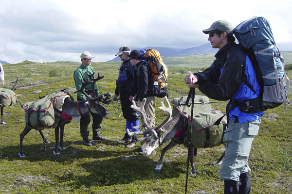Reindeer Trekking in Sweden with Crossing Latitudes